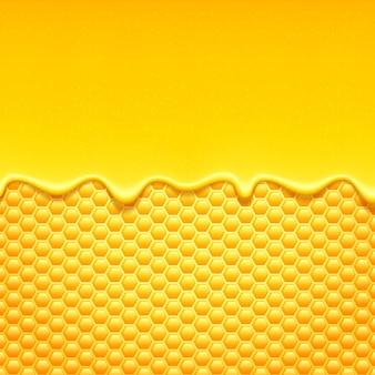 Zoete honing druipt met honingraat.