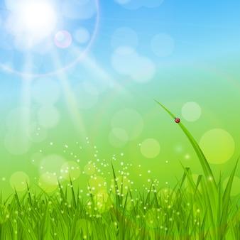 Zomer abstracte achtergrond met gras illustratie.