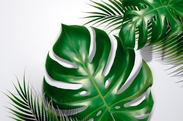 Zomer achtergrond met tropische bladeren en schaduwen