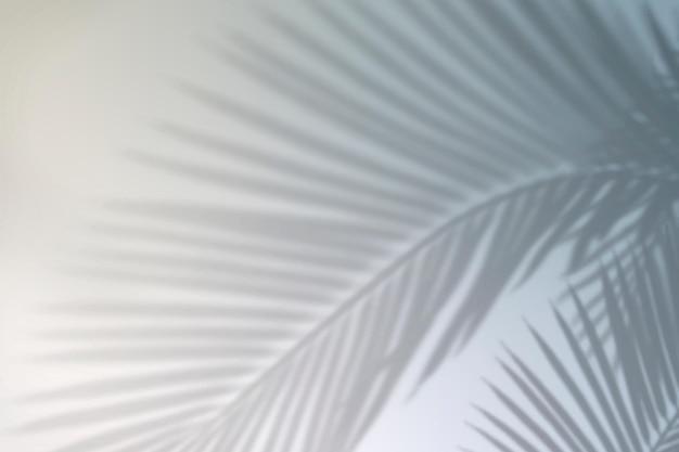 Zomer gradiënt achtergrond vector met blad schaduw