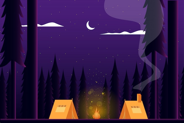 Zomer kamperen in het bos