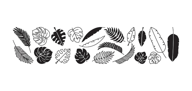 Zomer palm blad plant set zwart-wit.