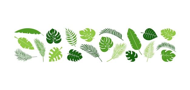Zomer palmblad plantenset