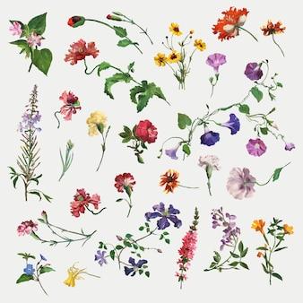 Zomerbloem set illustratie, geremixt van kunstwerken van jacques-laurent agasse