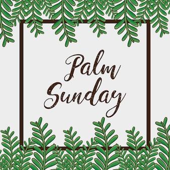 Zondag palm takken religie achtergrond