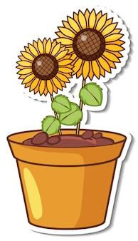 Zonnebloemen in een pot sticker