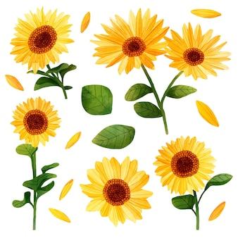 Zonnebloemillustratie in handgeschilderde stijl