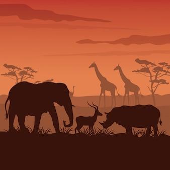 Zonsondergang afrikaans landschap met silhouet wilde dieren
