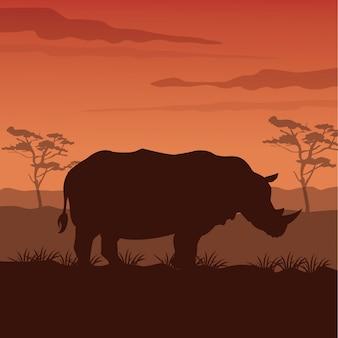Zonsondergang afrikaanse landschap met silhouet neushoorn staande
