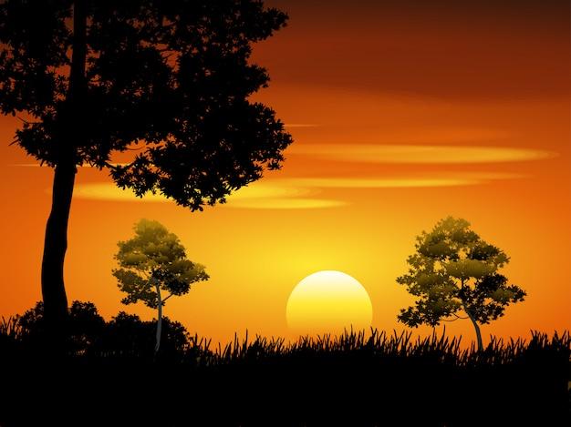 Zonsonderganghemel in bos