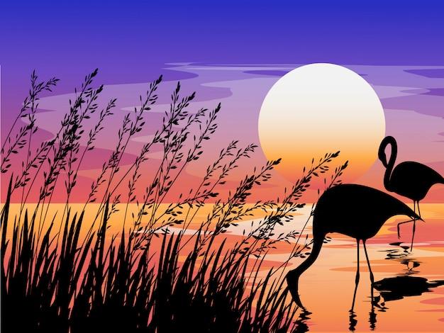 Zonsondergangscène met silhouet van flamingo en gras