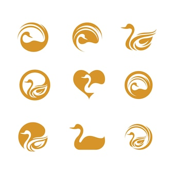 Zwaan pictogram sjabloon vector illustratie ontwerp