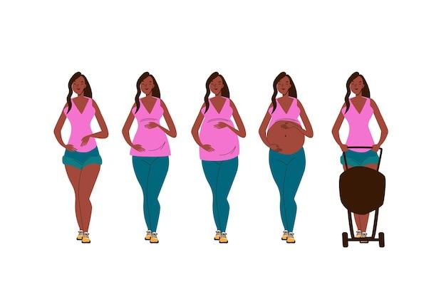 Zwangerschap stadia illustratie concept