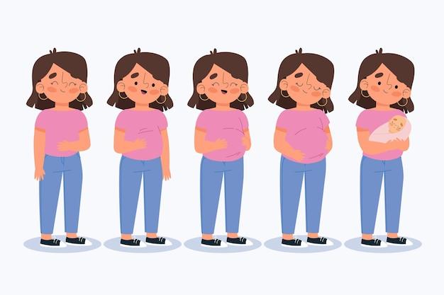 Zwangerschapsstadia geïllustreerd