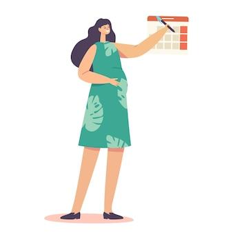 Zwangerschapsstadia, zwangerschapsconcept. zwanger vrouwelijk personage met grote buik ronde datum in kalender check dag van geboorte van baby. babybevalling, bevalling, moederschap. cartoon mensen vectorillustratie