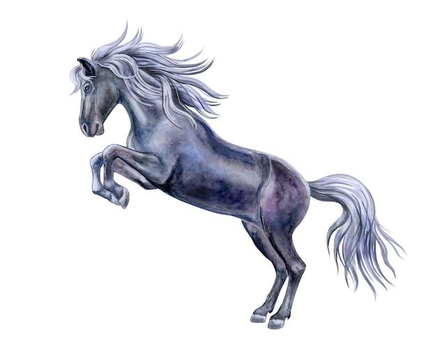 Zwart speels paard met zilveren manen op wit wordt geïsoleerd. aquarel illustratie