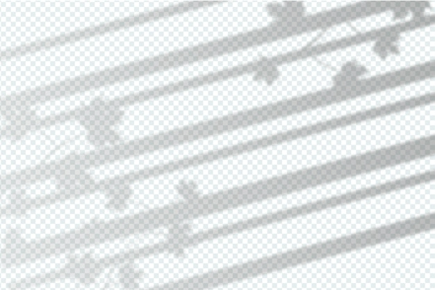 Zwart-wit grijs schaduweffectontwerp