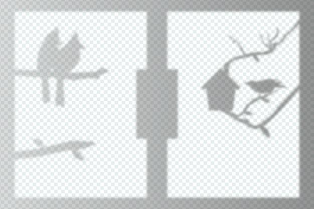 Zwart-wit transparante schaduwen overlay effect thema