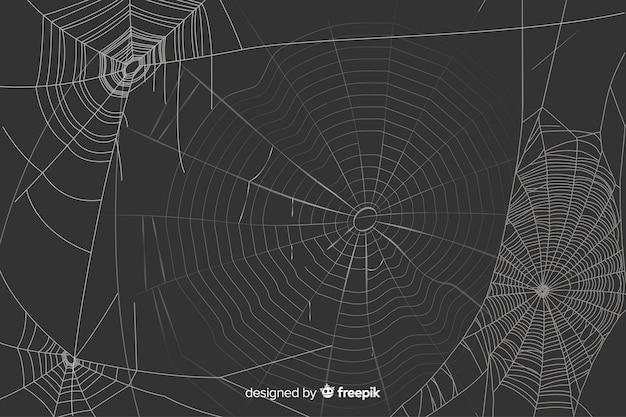 Zwarte achtergrond met realistisch wit spinneweb