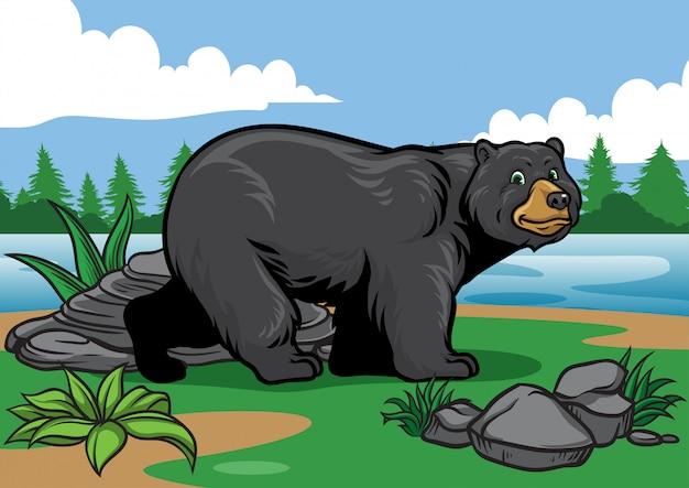 Zwarte beer in de natuur