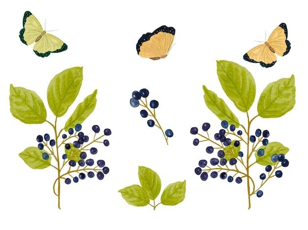 Zwarte bessen tak en vlinders aquarel collectie