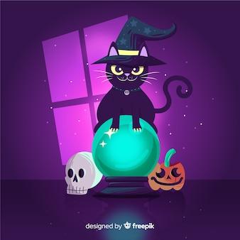 Zwarte kat met kristallen bol met heks