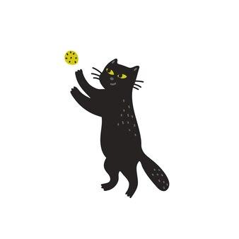 Zwarte kat spelen met een bal