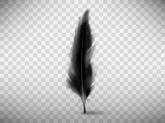 Zwarte pluizige veer met realistische schaduw