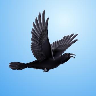 Zwarte raaf op blauwe achtergrond