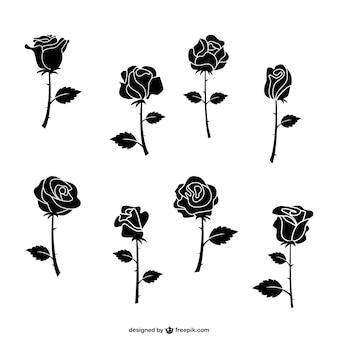 Zwarte rozen pakken