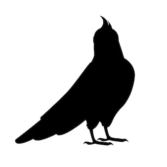 Zwarte silhouet volwassen papegaai van normale grijze valkparkiet op zoek naar jou (nymphicus hollandicus, corella) cartoon vogel ontwerp platte vectorillustratie geïsoleerd op een witte achtergrond.