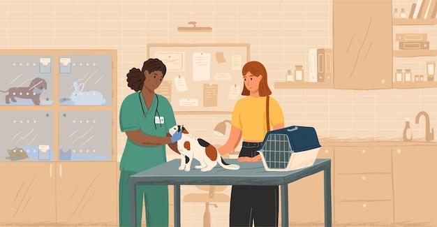 Zwarte vrouwelijke dierenarts die kat concept vectorillustratie onderzoekt. dierenarts die huisdieren geneest. klant met kat bezoekt dierenkliniek