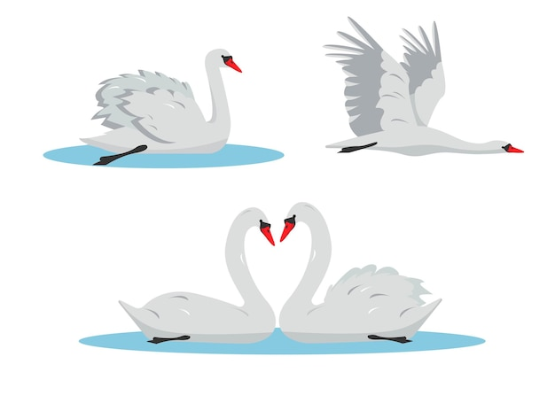 Zwemmen en vliegende witte zwaan vogels set