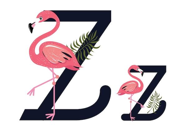 Zz flamingo's